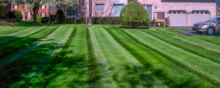 Roanoke VA Lawn Care, Mulching, Planting, Leaf Clean Up and Removal, Snow Removal, Aeration, Over seeding, Sod Installation, Outdoor Lighting